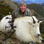 Alaska Mt Goat-1