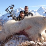 Mountain_goat_hunting_2