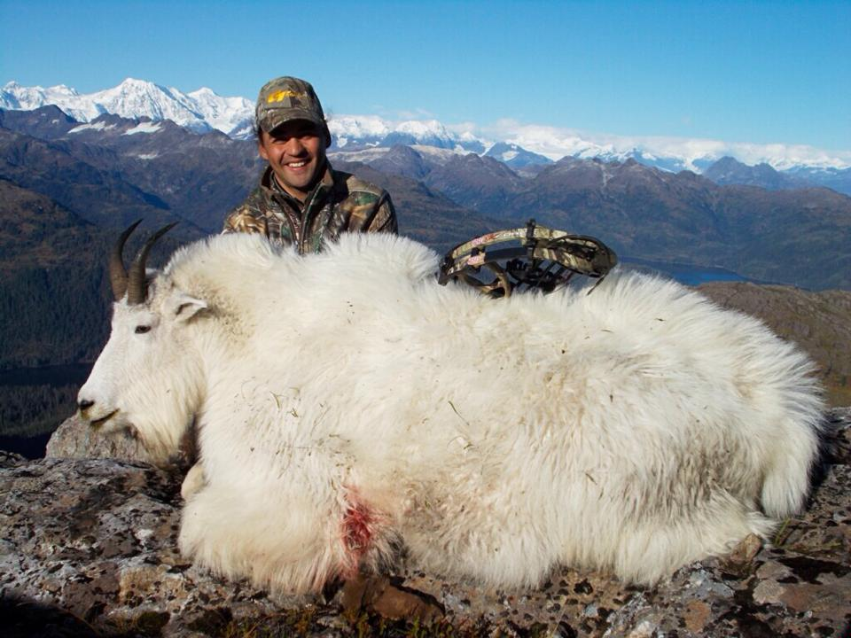 Mountain Goat Hunts In A Great Alaska Hunt Trophy Area